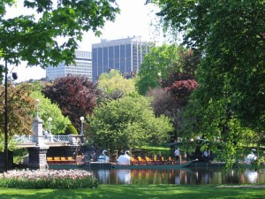 The Boston Public Garden.